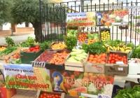 "VÍDEO: Campaña de CERES sobre alimentos ""No transgénicos"""