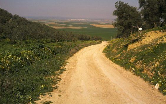 La Junta abre el trámite de información de la Estrategia de Bioeconomía y publica una lista provisional para caminos rurales