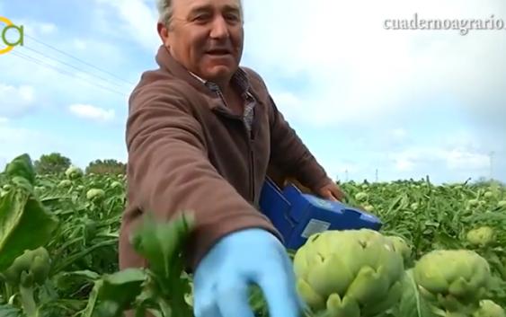 La Junta valora que el reglamento de la PAC incluya al pequeño agricultor y pide seguir batallando para no perder ni un euro