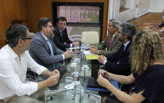 Sánchez Haro pide a la UE que lleve a la Organización Mundial del Comercio la imposición de aranceles a la aceituna de mesa