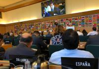 España defiende en el Comité Forestal de la FAO una particular atención de nuestro sector y ecosistemas forestales