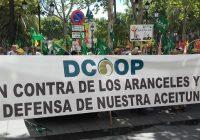 Unidad del sector de la aceituna de mesa contra los aranceles de EEUU en Sevilla