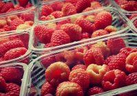 Andalucía exporta frutos rojos hasta mayo por valor de 969,9 millones de euros, un 1,1% más que en la campaña anterior