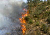 El Ministerio de Agricultura, Pesca y Alimentación envía un amplio dispositivo aéreo al incendio de Calañas en Huelva
