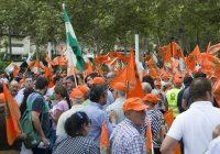 UPA Andalucía y los productores de aceituna de mesa, salen a la calle por unos precios justos