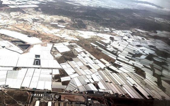 El Plan Renove de la Junta permitirá a los agricultores sustituir sus invernaderos por otros de tecnología más avanzada