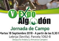 VÍDEO: El próximo 18 de septiembre se celebrará en Lebrija la V edición de Expoalgodón