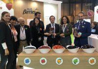 Andalucía lidera las exportaciones hortofrutícolas, con 3.895 millones hasta agosto y una subida del  1,1%