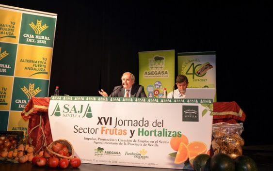 La producción citrícola española se recupera y supera el bache productivo de la pasada campaña