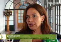 VÍDEO: La Junta anuncia lineas de apoyo a la aceituna de mesa