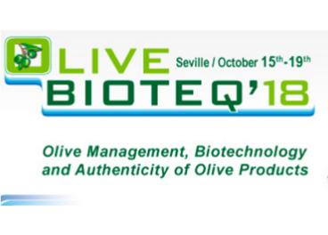 Sevilla acoge un congreso internacional de investigación sobre la tecnología y el aceite de oliva