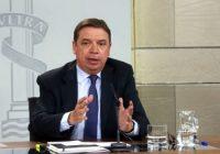 Luis Planas informa sobre la posición de España para la reforma de la Política Agrícola Común post 2020