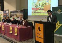 Fernando Miranda destaca las grandes oportunidades de futuro del sector del olivar