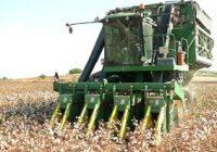 La Consejería de Agricultura autoriza el pago de 637 millones de euros en ayudas directas de la Política Agrícola Común