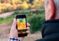 La apuesta de Andalucía por la digitalización del sector agroalimentario sirve de ejemplo para otras regiones europeas