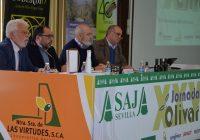 Pese al incremento de cosecha, España no podrá compensar la caída de la producción mundial del aceite de oliva de la campaña 2018/19