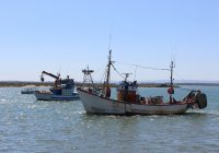 El Gobierno celebra la aprobación del acuerdo de Pesca con Marruecos