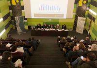 Andalucía produce hasta diciembre 555.636 toneladas de aceite de oliva, algo más de un 40% de lo estimado en el aforo oficial