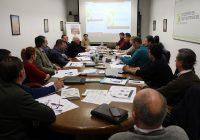 Cooperativas Agro-alimentarias de Andalucía pide explorar todas las posibilidades para defender al sector de la aceituna de mesa