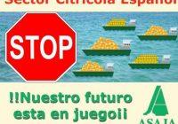 Asaja lleva ante la sede de la Comisión Europea en Madrid al sector de los cítricos en protesta por la situación de precios