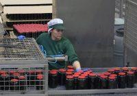 Manzanilla Olive comercializa 30.000 toneladas de aceitunas al año por todo el mundo