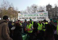 UPA Andalucía reparte naranjas para protestar por los bajos precios de los cítricos
