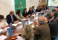 """Consejería y sector olivarero acuerdan por """"unanimidad"""" trabajar de forma conjunta con el Ministerio ante la crisis de los precios"""
