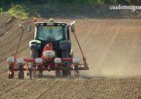 VÍDEO: La siembra de la remolacha en Andalucía