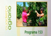 Cuaderno Agrario PGM 153
