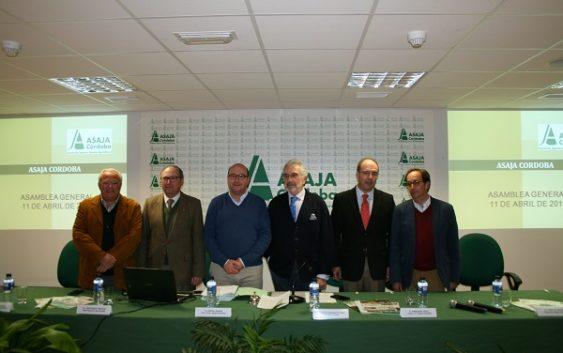 Asaja celebra su asamblea anual con preocupación por la crisis del olivar y los cítricos
