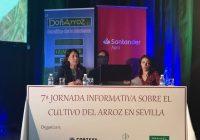 VÍDEO: 7ª Jornada Informativa sobre cultivo del arroz en Sevilla
