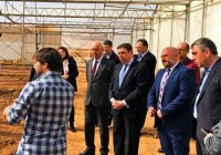 Luis Planas anima a las cooperativas a ganar dimensión y apostar por la transformación para generar mayor riqueza