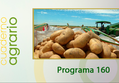 Cuaderno Agrario PGM 160