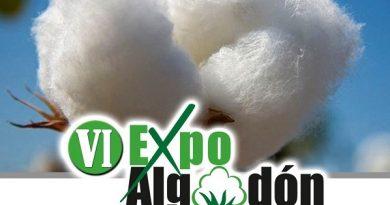 El 26 de junio se presenta en Los Palacios la VI Edición de Expoalgodón