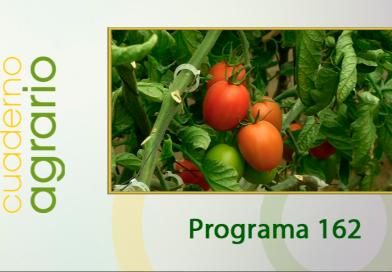 Cuaderno Agrario PGM 162