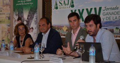 Los ganaderos sevillanos respaldan el manifiesto del ibérico extensivo impulsado por las Asajas de Andalucía y Extremadura