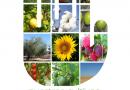 La Junta inicia una campaña dirigida al público general sobre el riesgo que supone traer plantas y frutas de otros países