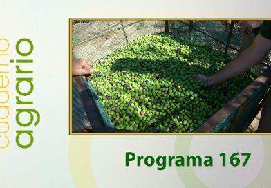 Cuaderno Agrario PGM 167