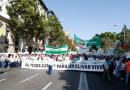 Miles de olivareros reclaman en Madrid precios justos