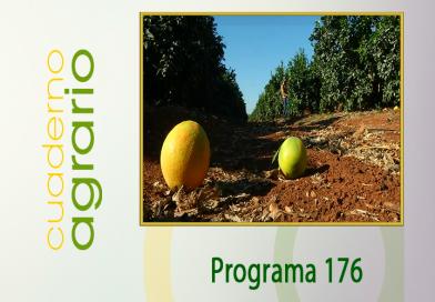 Cuaderno Agrario PGM 176
