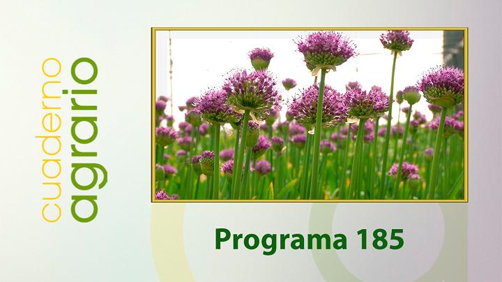 Cuaderno Agrario PGM 185