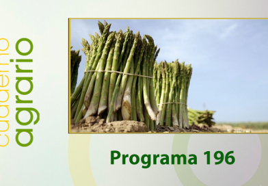 Cuaderno Agrario PGM 196