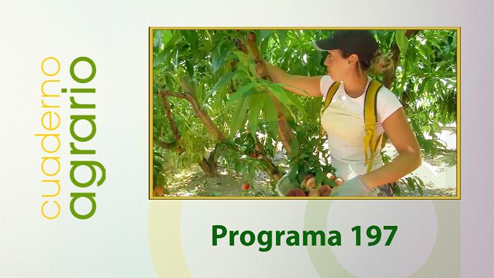 Cuaderno Agrario PGM 197