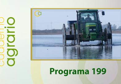 Cuaderno Agrario PGM 199