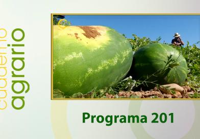 Cuaderno Agrario PGM 201