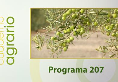 Cuaderno Agrario PGM 207