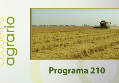 Cuaderno Agrario PGM 210