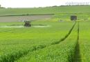 VÍDEO: Buenas prácticas agrarias en el cereal andaluz