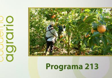 Cuaderno Agrario PGM 213