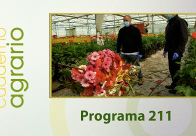 Cuaderno Agrario PGM 211